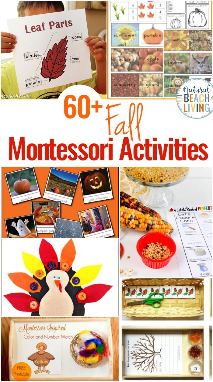 60+ Montessori Activities For Fall - Montessori Fall Themes Free - Free Montessori Printables