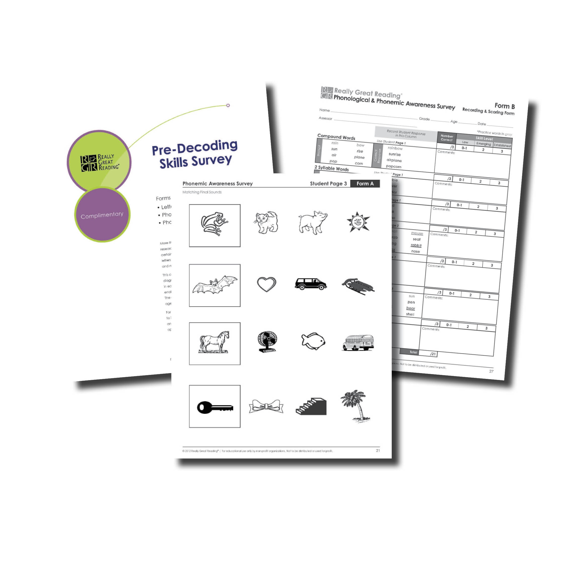 Advanced Decoding Survey Plus | Really Great Reading - Free Printable Diagnostic Reading Assessments