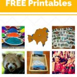 Asia   Free Printables. Resources For The Montessori Classroom   Free Montessori Printables