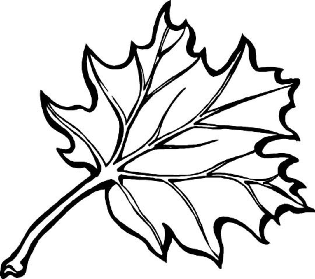 Autumn Borders Colouring Pages | Coloring_Pages | Fall Leaves - Free Printable Fall Leaves Coloring Pages