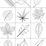 Autumn Leaves Coloring Page | Free Printable Coloring Pages   Free Printable Fall Leaves Coloring Pages