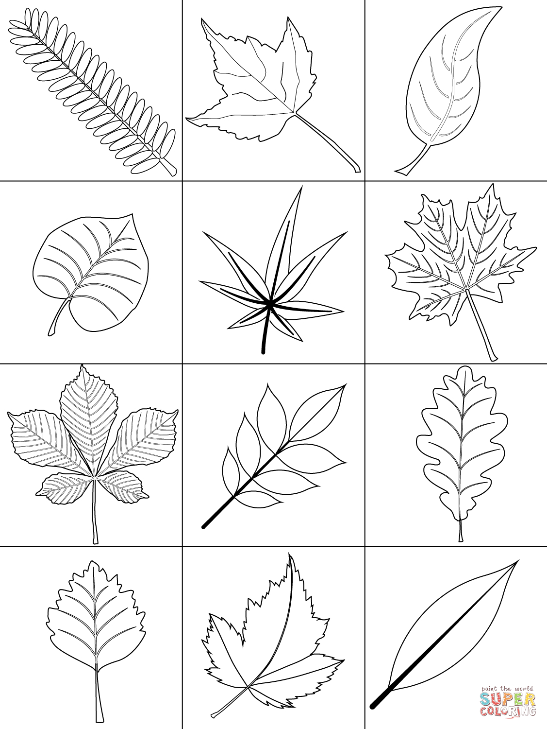 Autumn Leaves Coloring Page | Free Printable Coloring Pages - Free Printable Fall Leaves Coloring Pages