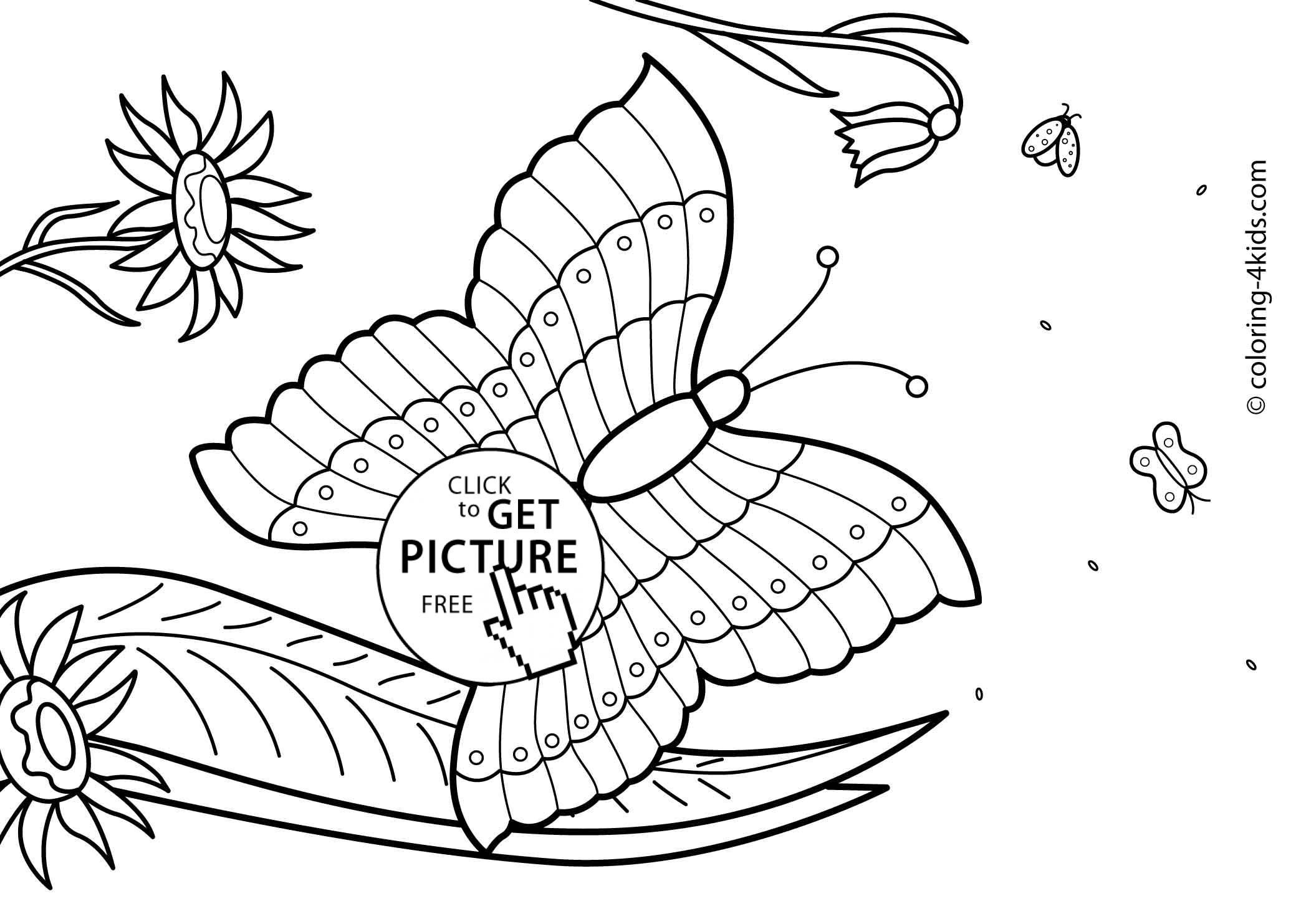 Butterfly Summer Coloring Pages For Kids, Free, Printable - Coloring - Summer Coloring Sheets Free Printable