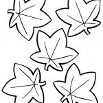 Coloring Book World: Autumn Leaves Coloring Pages.   Free Printable Fall Leaves Coloring Pages