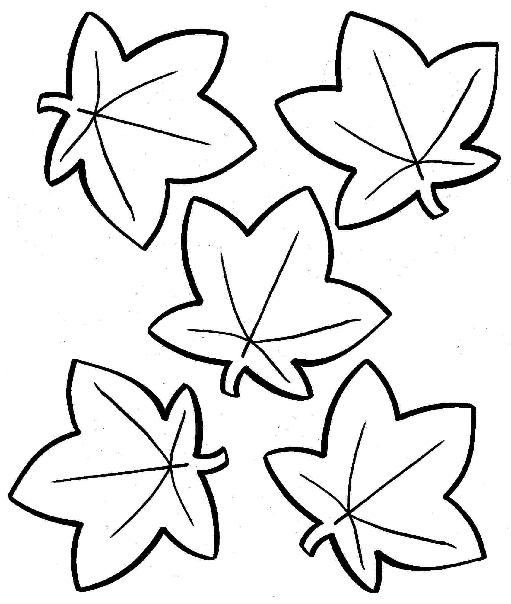 Coloring Book World: Autumn Leaves Coloring Pages. - Free Printable Fall Leaves Coloring Pages