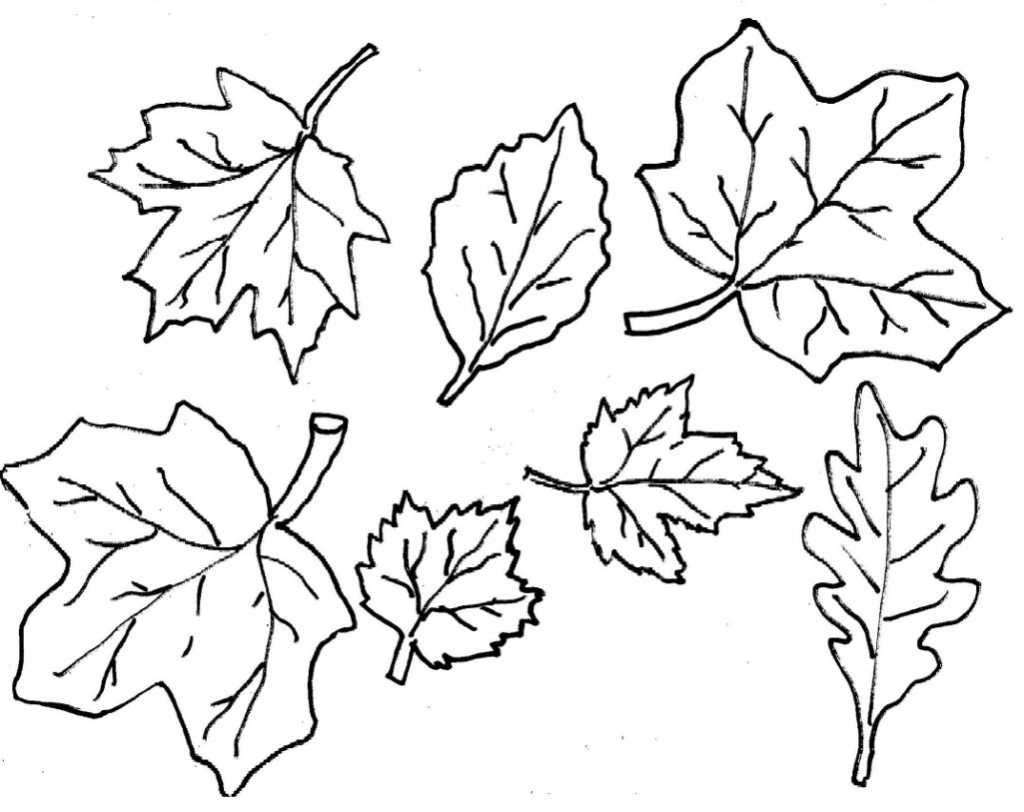 Coloring Ideas : Fall Leaves Coloringagesrintable Ideasage Weird - Free Printable Fall Leaves Coloring Pages