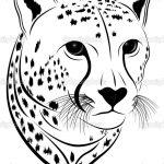 Coloring Pages Cheetah Face (Mammals > Cheetah)   Free Printable   Free Printable Cheetah Pictures