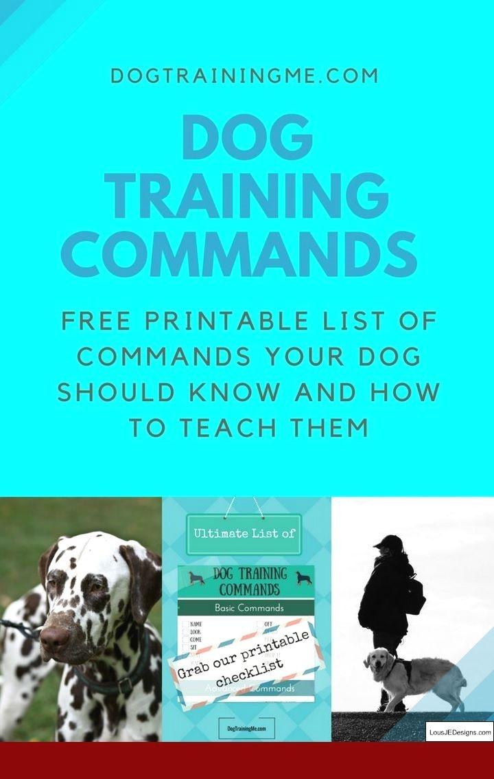 Doberman Dog Training Tips In Hindi And Pics Of Dog Training Tips - Free Printable Service Dog