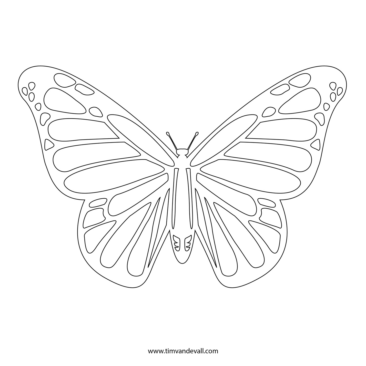 Free Monarch Butterfly Template, Download Free Clip Art, Free Clip - Free Printable Images Of Butterflies
