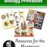 Free Montessori Biology Printables For Children   Montessori Nature   Free Montessori Printables