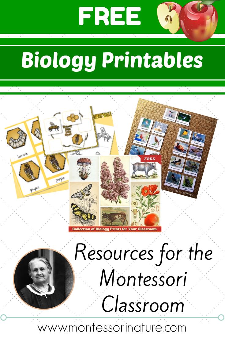 Free Montessori Biology Printables For Children - Montessori Nature - Free Montessori Printables
