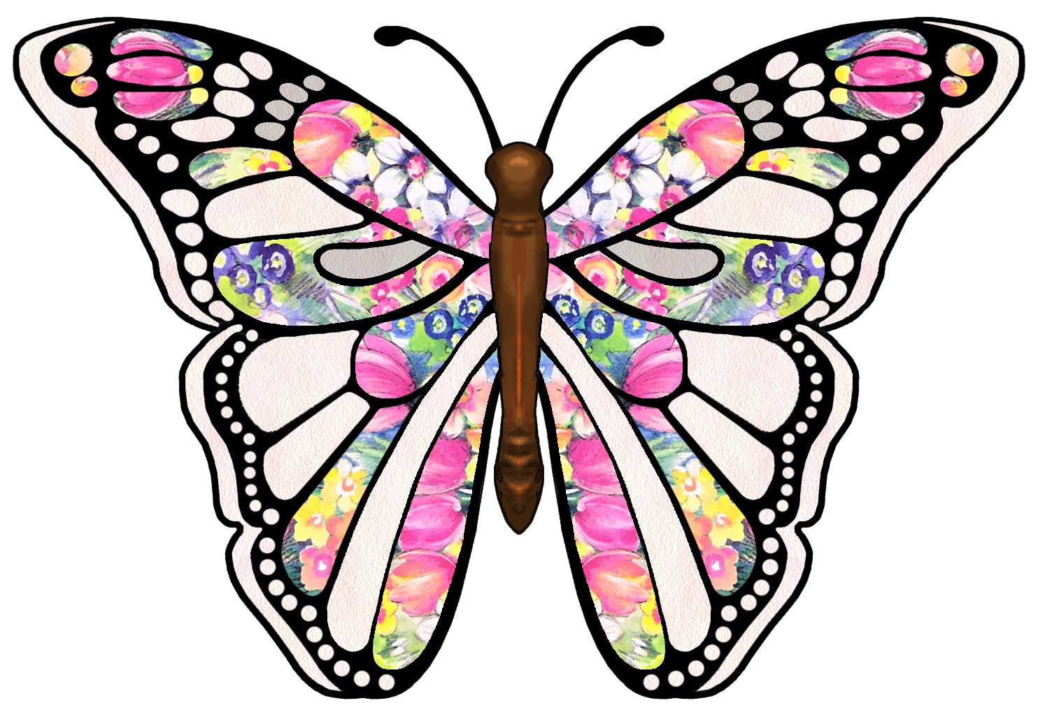 Free Pictures Of Butterflies | Free Download Best Free Pictures Of - Free Printable Butterfly Clipart