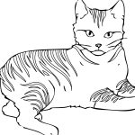 Free Printable Cat Coloring Pages For Kids   Cat Coloring Pages Free Printable