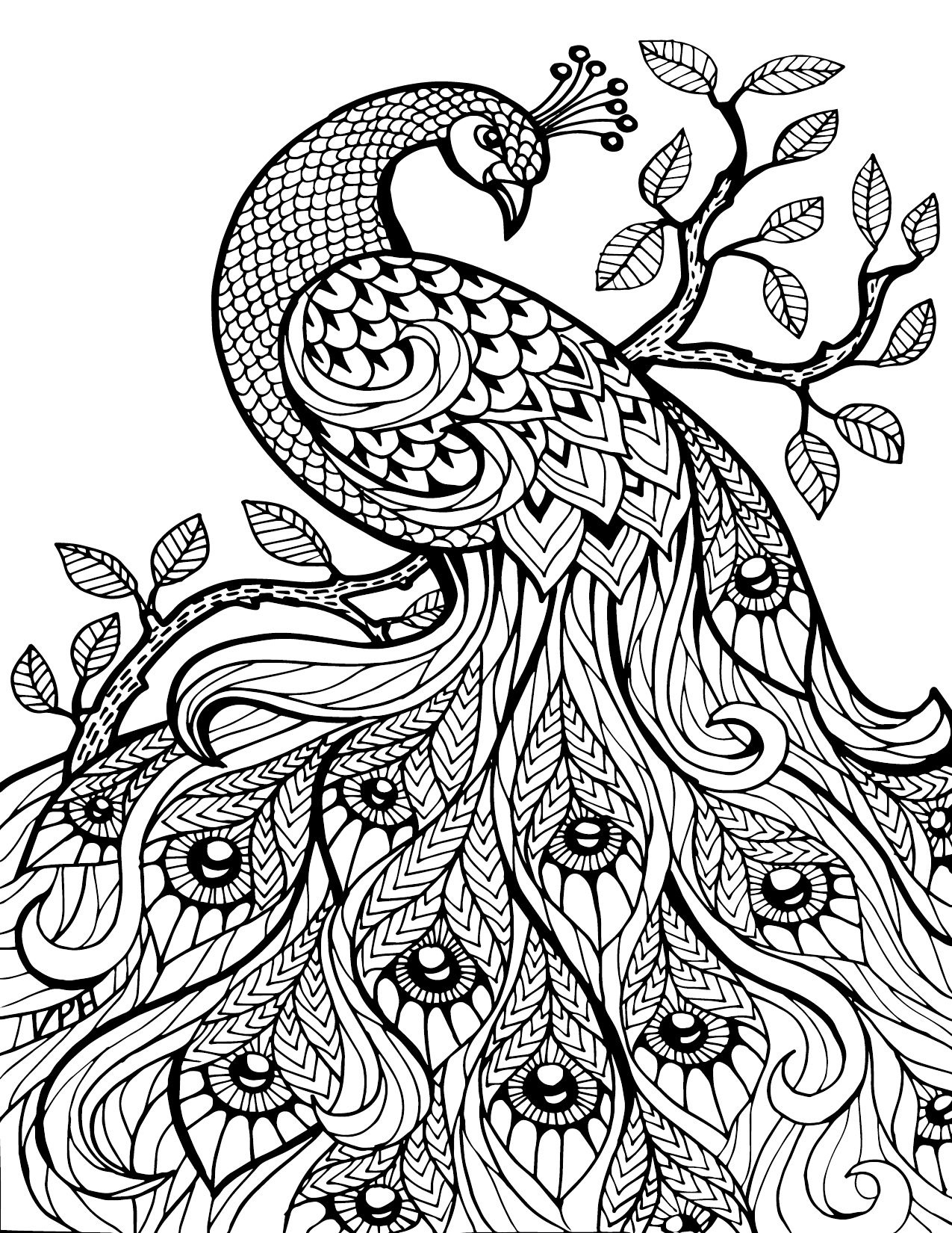 Free Printable Coloring Pages For Adults Only Image 36 Art - Free Printable Coloring Books