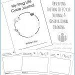 Free Printable Frog Life Cycle Journal | Science Notebooking   Life Cycle Of A Frog Free Printable Book