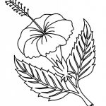 Free Printable Hibiscus Coloring Pages For Kids   Coloring Pages   Free Printable Hibiscus Coloring Pages