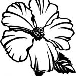 Free Printable Hibiscus Coloring Pages For Kids   Flower Coloring   Free Printable Hibiscus Coloring Pages
