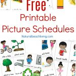 Free Printable Picture Schedule Cards   Visual Schedule Printables   Free Printable Visual Schedule For Classroom