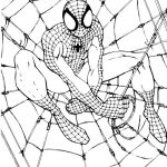 Free Printable Spiderman Coloring Pages For Kids   Free Printable Spiderman Coloring Pages