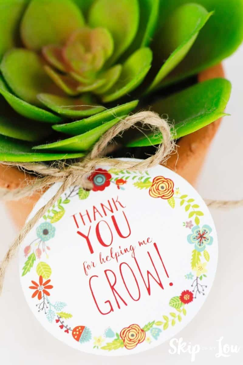 Free Printable Thank You For Helping Me Grow Gift Tags | Skip To My Lou - Thanks For Helping Me Grow Free Printable