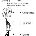 Kindergarten Zoo Animal Worksheet Printable | Worksheets (Legacy   Free Zoo Printables For Preschool