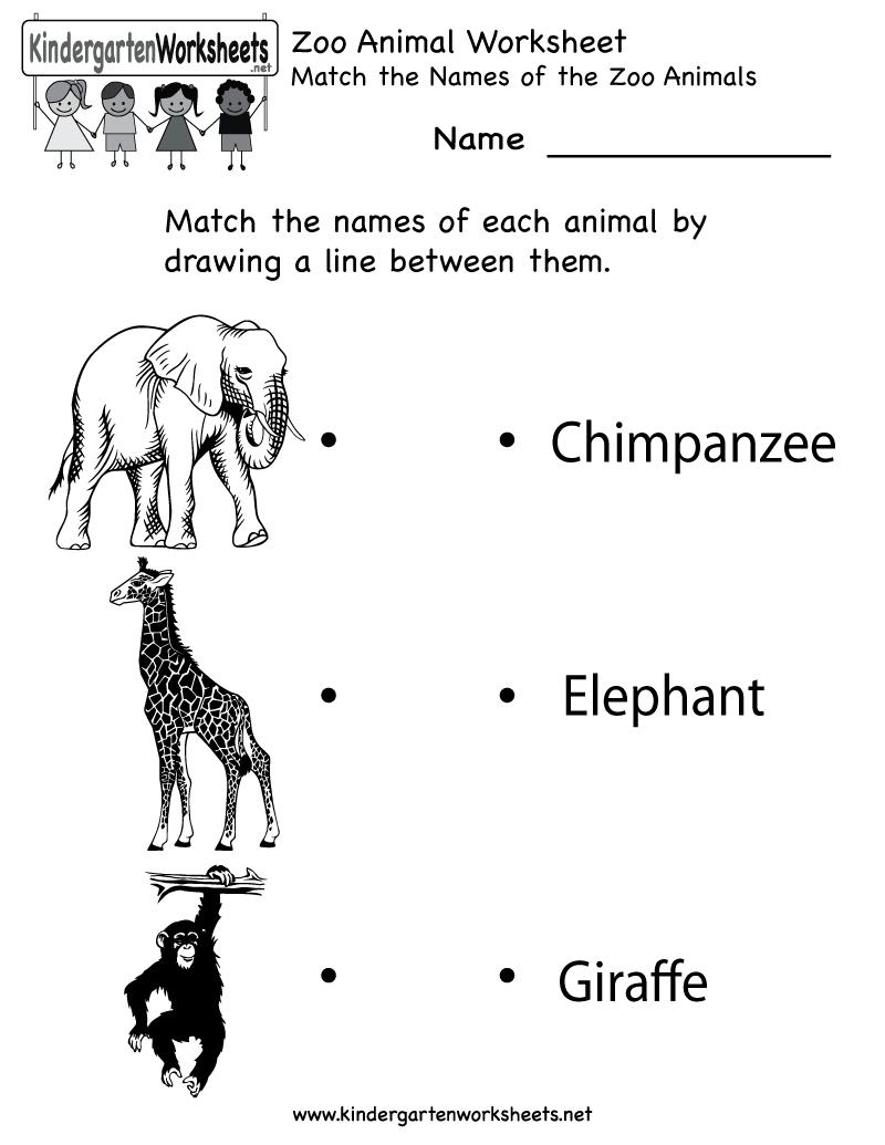 Kindergarten Zoo Animal Worksheet Printable | Worksheets (Legacy - Free Zoo Printables For Preschool