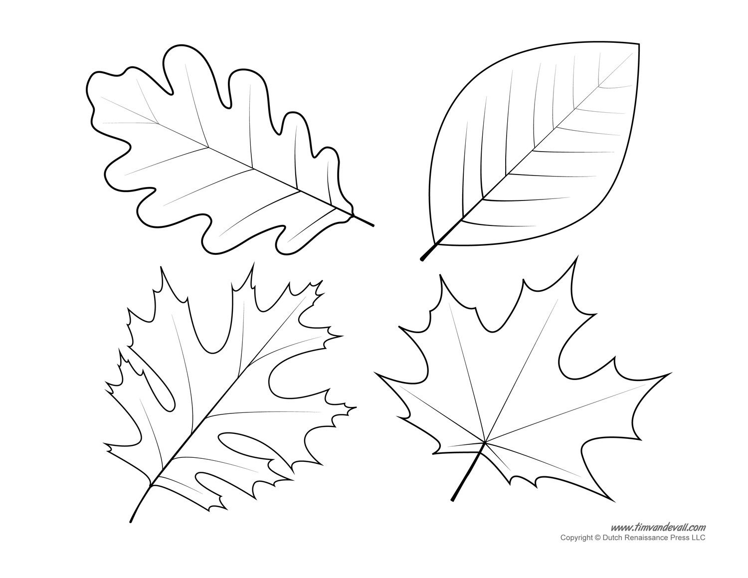Leaf Templates & Leaf Coloring Pages For Kids | Leaf Printables - Free Printable Leaf Template
