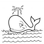 Orca Coloring Pages Whale Coloring Pages Killer Whale Coloring Pages   Free Printable Whale Coloring Pages