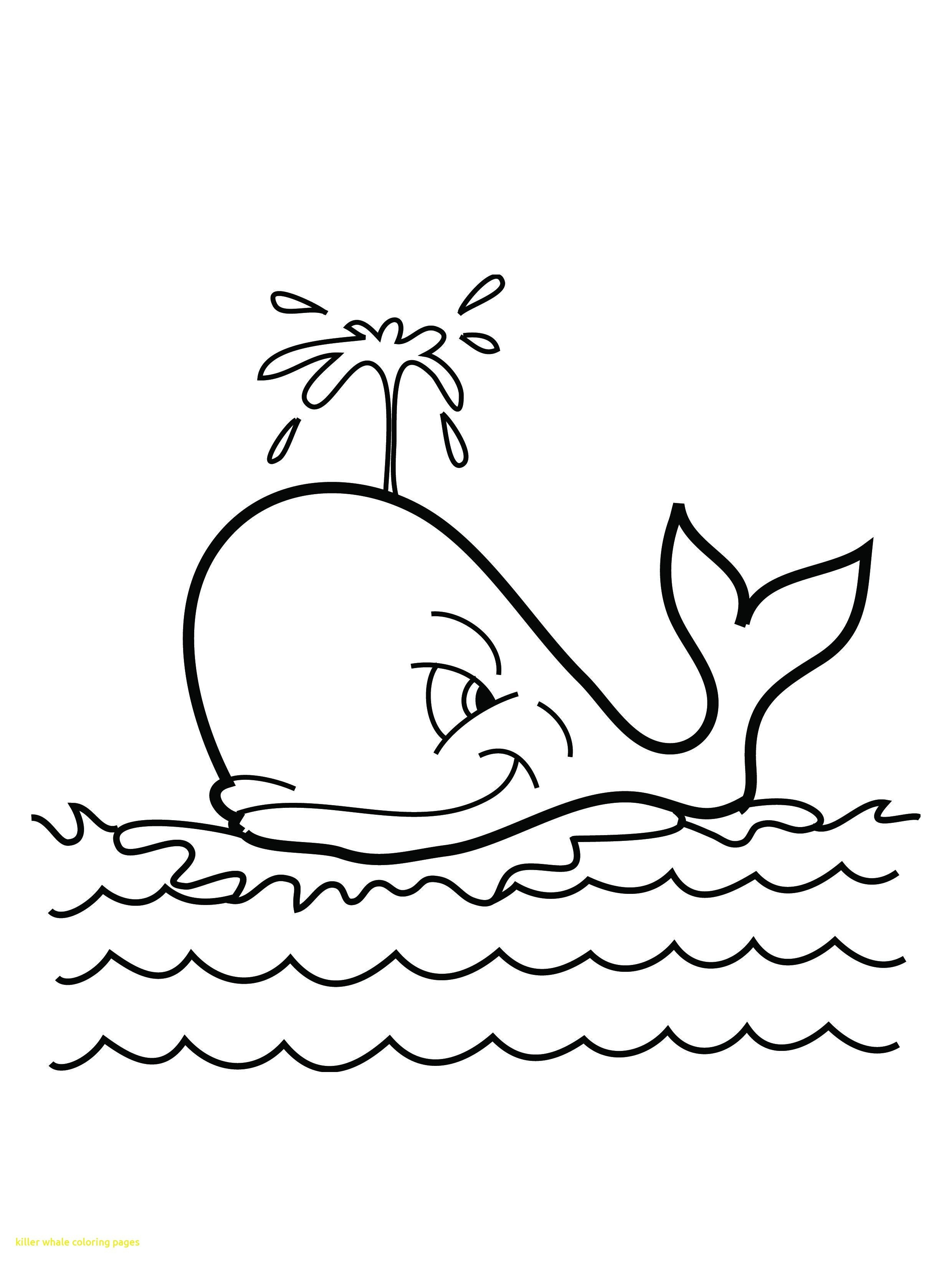 Orca Coloring Pages Whale Coloring Pages Killer Whale Coloring Pages - Free Printable Whale Coloring Pages
