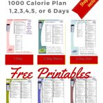 Paleo Diet: 1000 Calories Per Day   Menu Plan For Weight Loss   Free Printable Meal Plans For Weight Loss