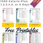 Printable 1200 Calorie Paleo Diet For 6 Days Plus Grocery List   Free Printable 1200 Calorie Diet Menu