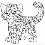 Printable Cheetah Coloring Pages For Kids | Cool2Bkids   Free Printable Cheetah Pictures