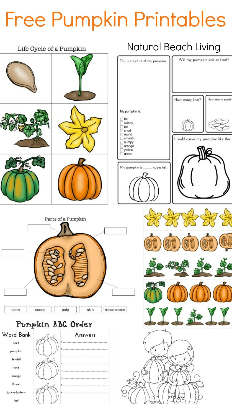 Pumpkin Activities For Kids - Pumpkin Theme Lesson Plan (Stem - Free Pumpkin Printables