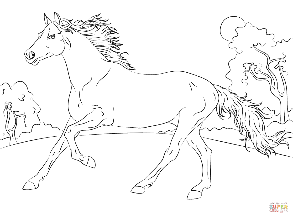 Running Arabian Horse Coloring Page | Free Printable Coloring Pages - Free Horse Printables