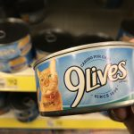 Save On 9Lives Cat Food With These Rare Printable Coupons   My Momma   Free Printable 9 Lives Cat Food Coupons