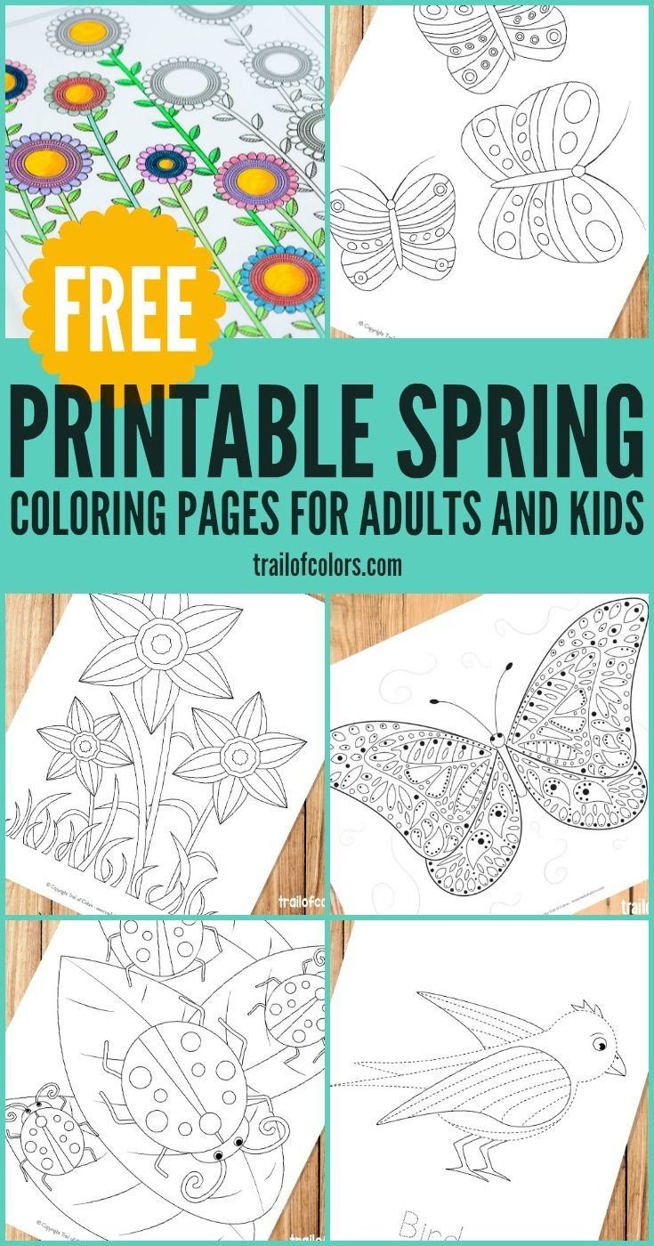 Spring Coloring Pages For Grown Ups And Kids | Spring Theme--Flowers - Free Printable Spring Pictures To Color