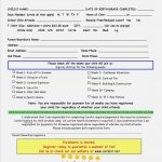 Summer Camp Application Form Sample | Leancy Travel   Free Printable Summer Camp Registration Forms