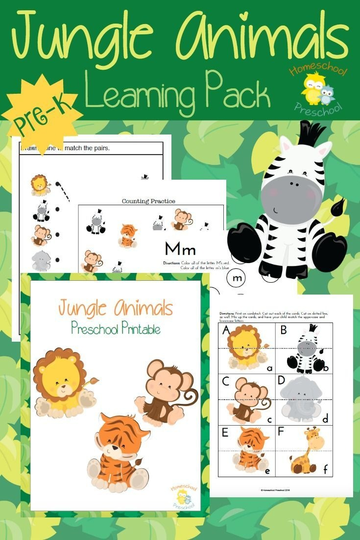 Teach Preschool With Free Jungle Animal Printables | Homeschool - Free Jungle Printables
