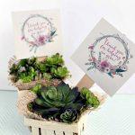 Thank You For Helping Me Grow Printable + Gift Idea   Consumer Crafts   Thanks For Helping Me Grow Free Printable