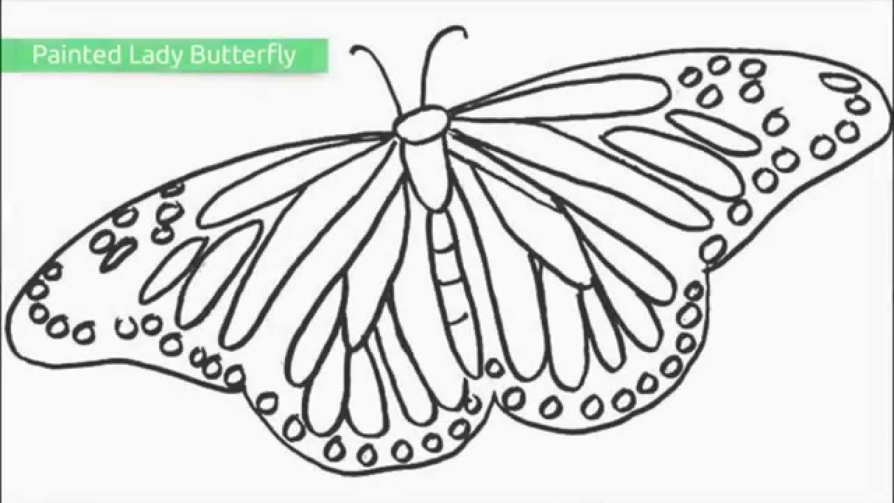 Top 25 Free Printable Butterfly Coloring Pages - Youtube - Free Printable Images Of Butterflies