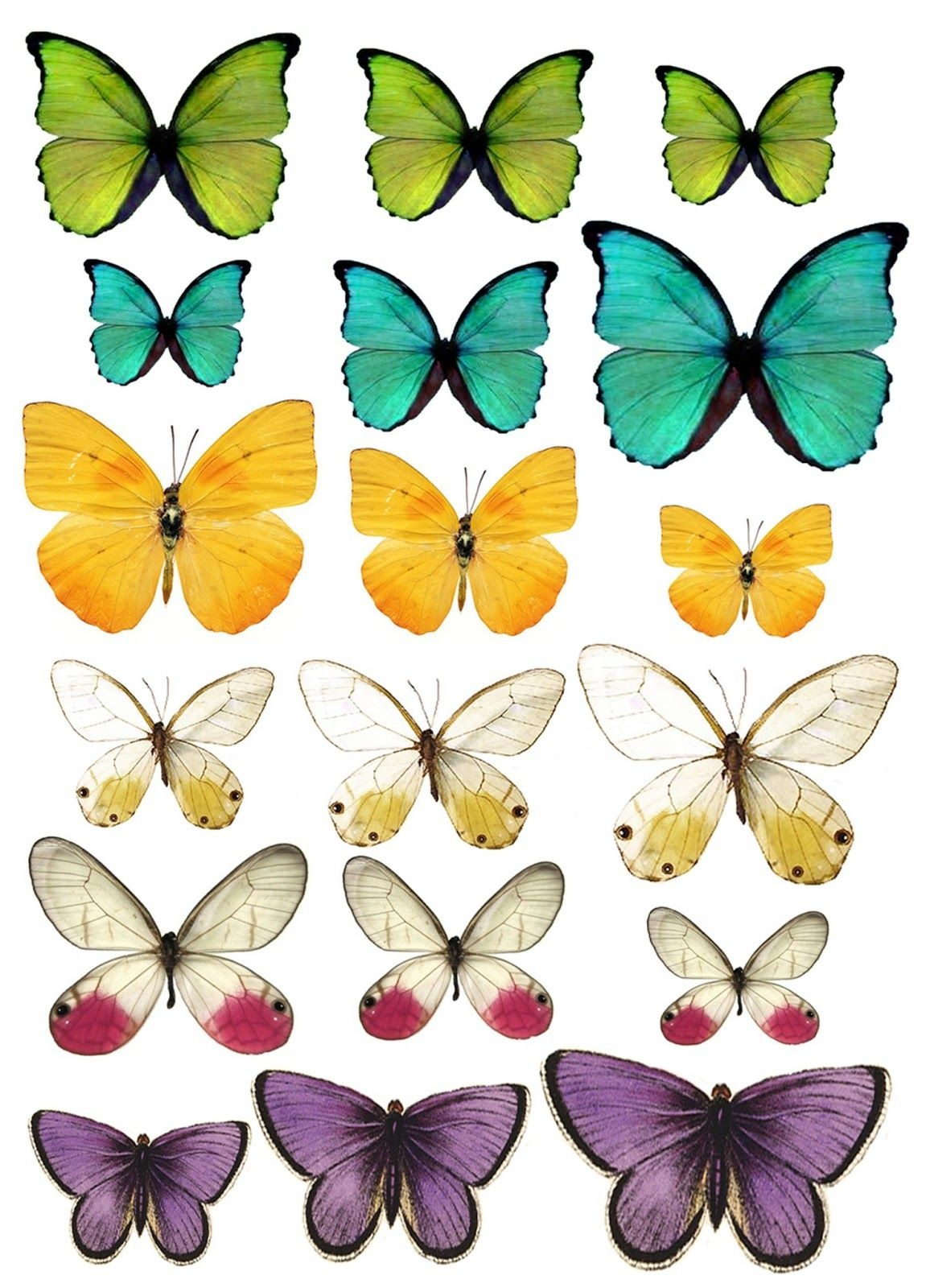 What A Beautiful Mess: Free Butterfly Printable | Printables - Free Printable Images Of Butterflies