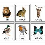 15 Animal Flash Cards | Kittybabylove   Free Printable Farm Animal Flash Cards