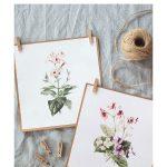 2 Free Watercolour Flower Printables   Floral Printables Free