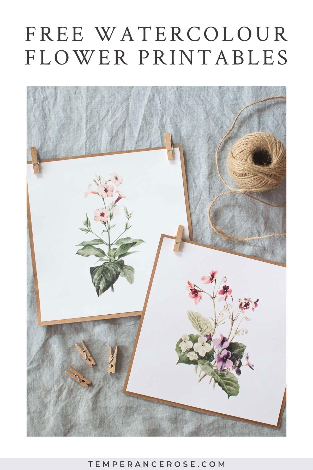 2 Free Watercolour Flower Printables - Floral Printables Free