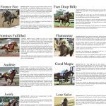 2018 Kentucky Derby Party Free Betting And Horse Profile Printables   Free Kentucky Derby Printables