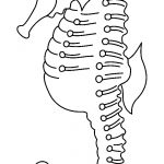 65+ Sea Creature Templates   Printable Crafts & Colouring Pages   Free Printable Sea Creature Templates
