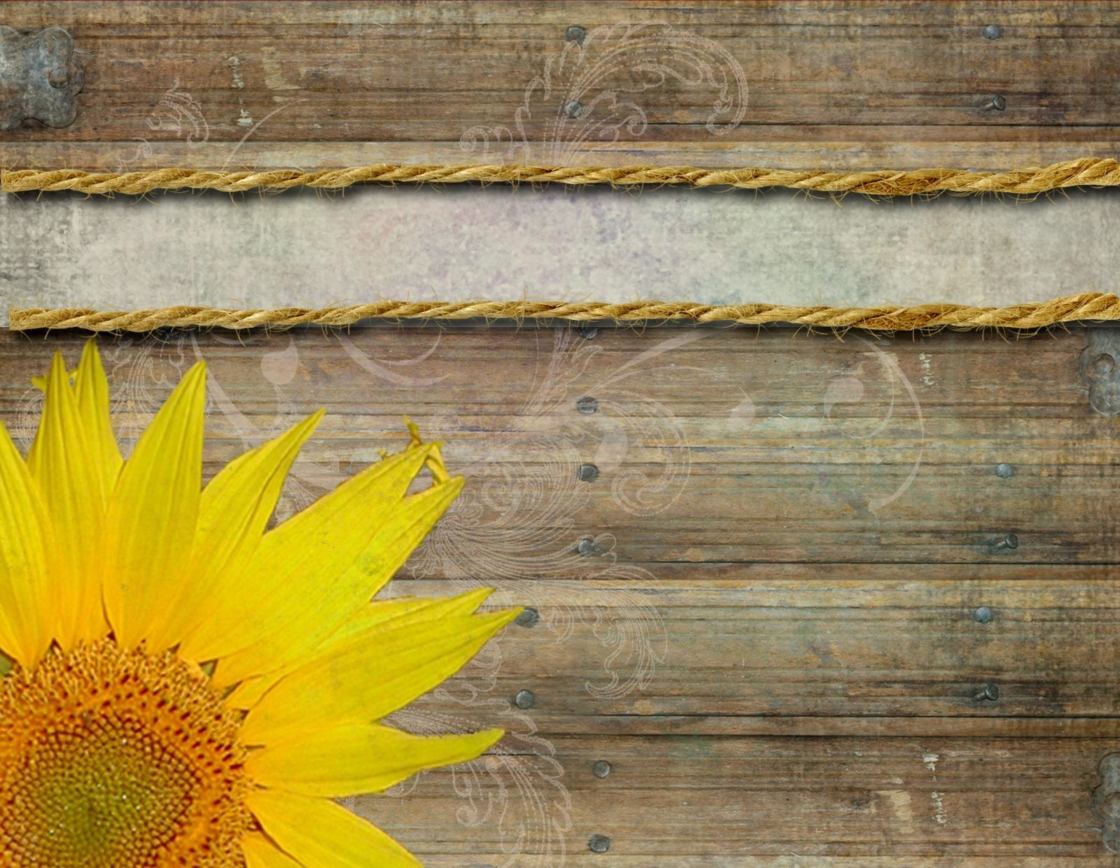 Abstract Yellow Sunflower Background Vector Ilration Template - Free Printable Sunflower Wedding Invitation Templates