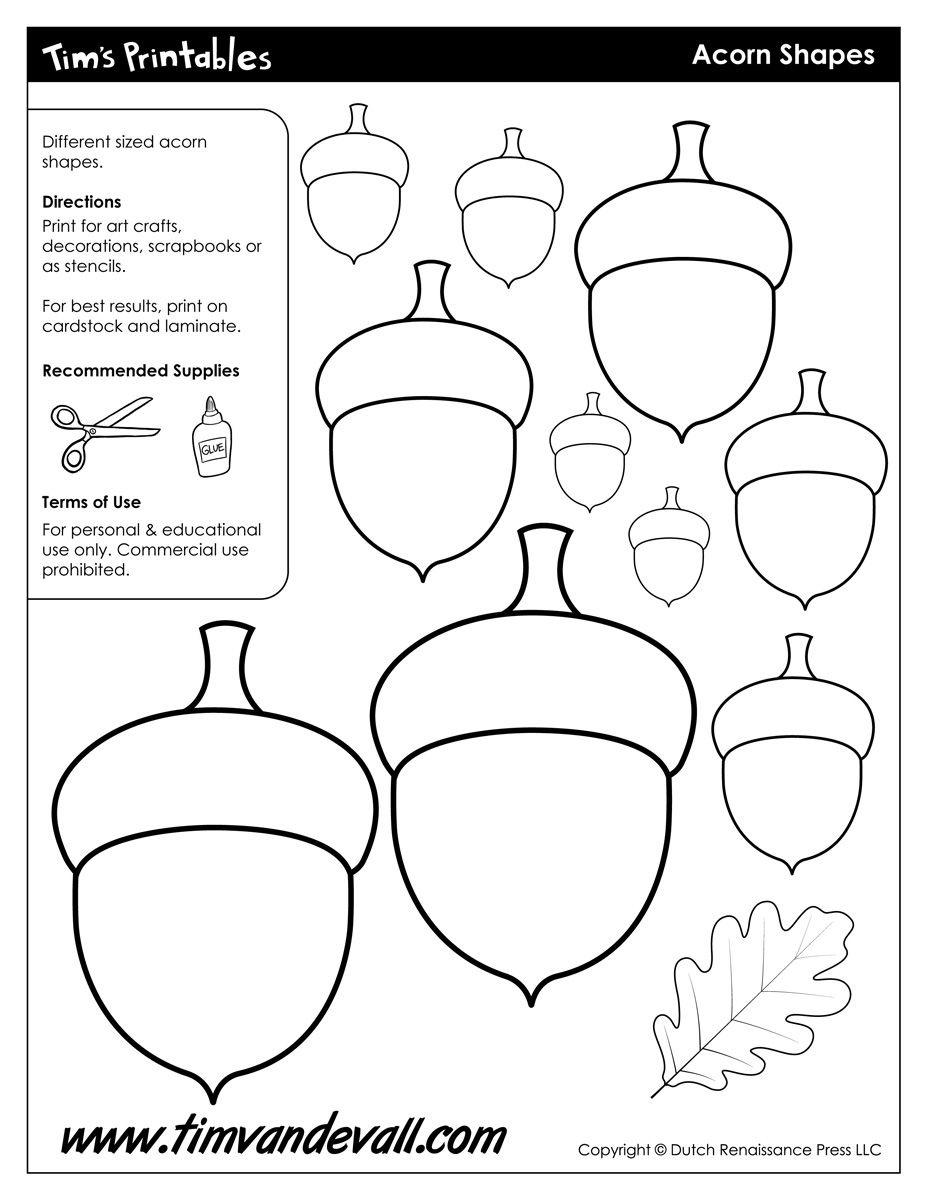Acorn Templates / Acorn Shapes   Preschool: Fall   Felt Crafts - Acorn Template Free Printable