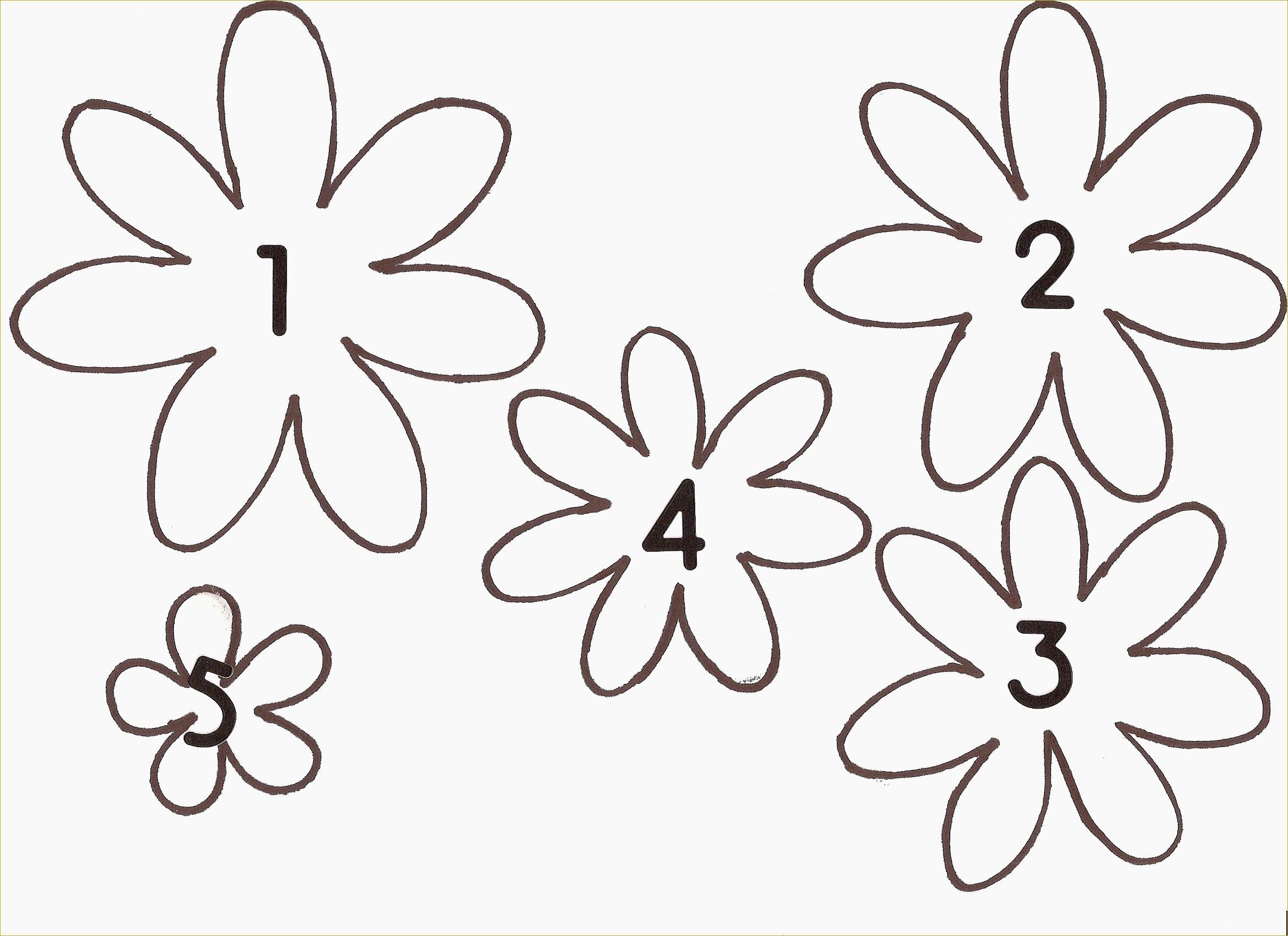 Beautiful Free Printable Flower Stencils | Www.pantry-Magic - Free Printable Flower Stencils