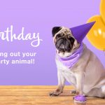 Birthday Cards & Greetings | American Greetings   Free Printable Pug Birthday Cards